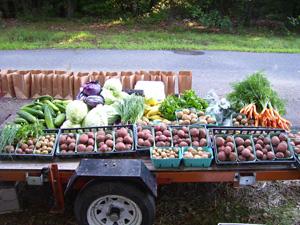 fresh vegetables on wagon